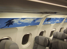 Cebu Pacific bahamasair sidewall thumb1